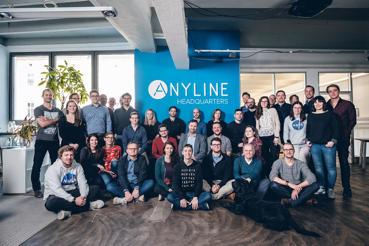 Anyline Team
